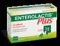 Enterolactis Plus Fermenti lattici vivi (10 bustine)