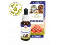 Australian Bush Flower Essences Animal Aggressive favorisce la docilità degli animali di piccola e media taglia (30 ml)