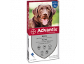 Advantix Spot on per Cani oltre 25kg (4 pipette)