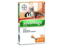 Advantage 40 per Gatti inferiori a 4 kg (4 pipette)
