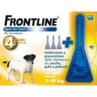 Frontline Spot on antiparassitario per Cani da 2 a 10 kg (4 pipette)