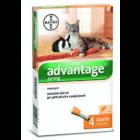 Advantage 40 per Gatti inferiori a 4 kg (4 pipette)