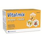 Vitalmix Pappa Reale (10 flaconcini)